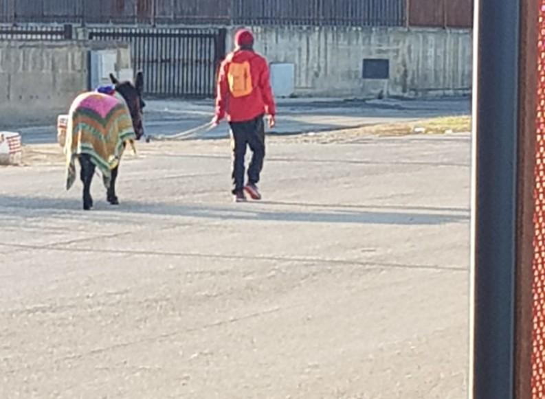 Bruno e Salam in cammino verso la Terra Santa per la pace. Ospiti della Misericordia di Andria